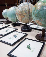 globe-display