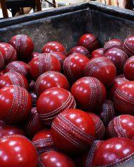 cricket-balls-1